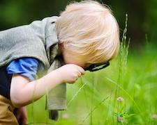Éloge de la curiosité
